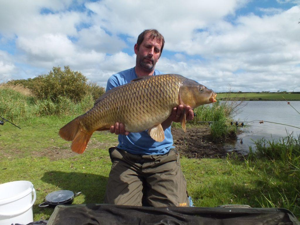 16lb common carp