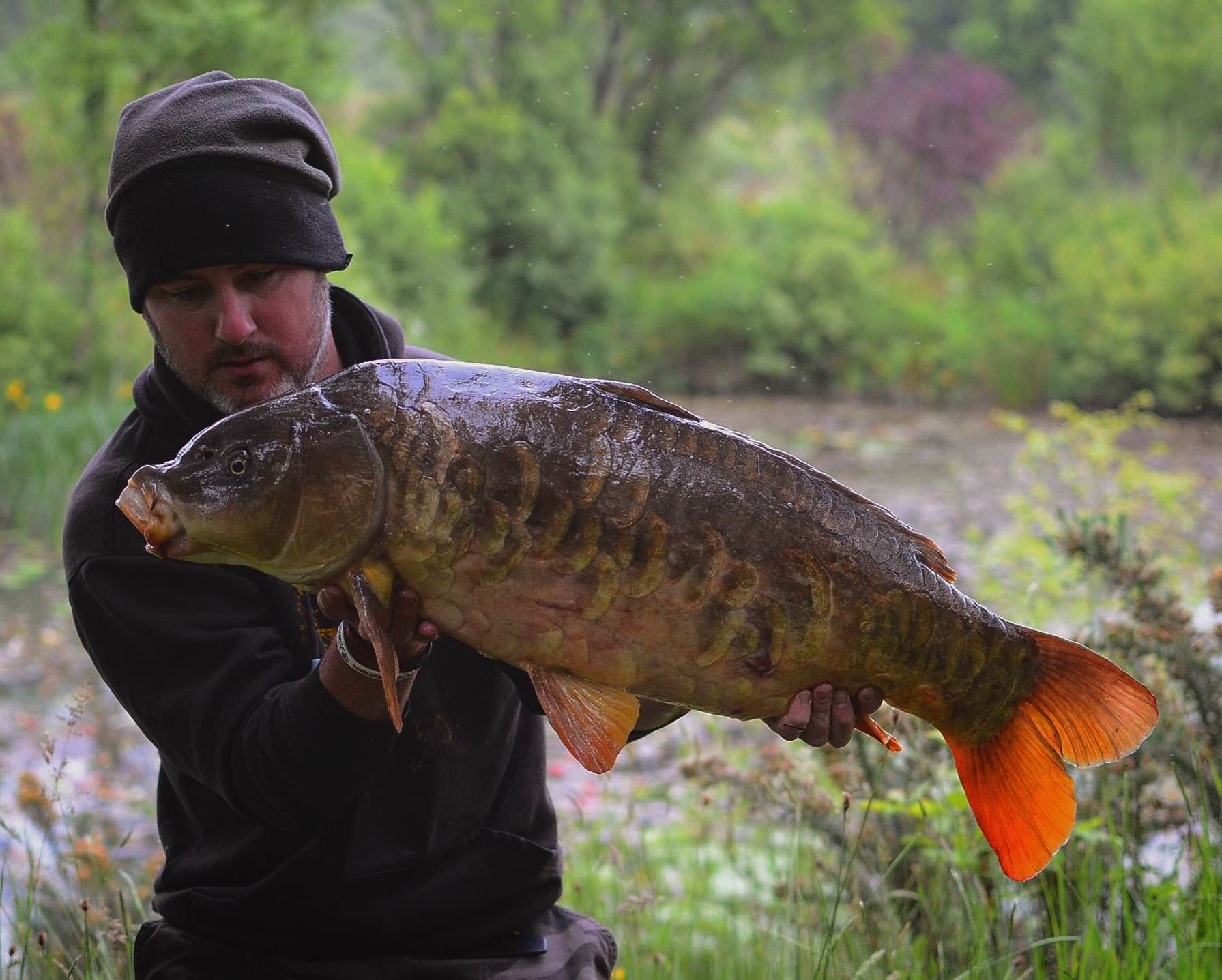 Ellis Titheridge 23lb 12oz Mirror Carp