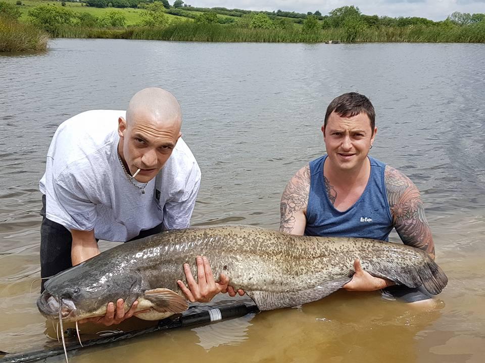 55lb catfish